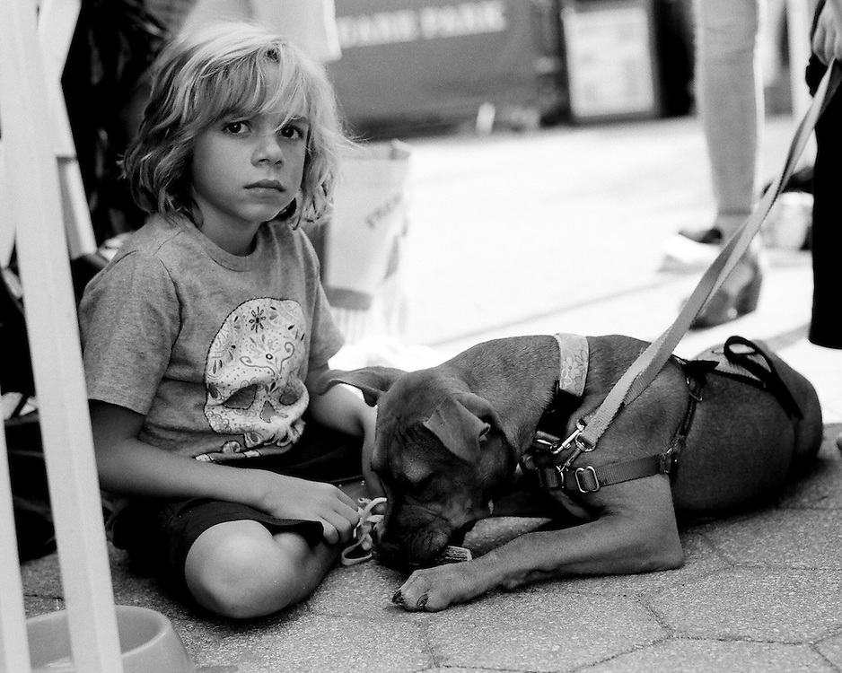 Well behaved young boy making a new friend at Adoptapalooza 2014 in Union Square Park, NYC.