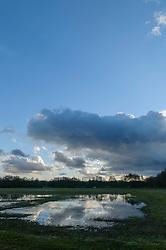 Cruysbergen, Bussum, Gooise Meren, Noord Holland, Netherlands