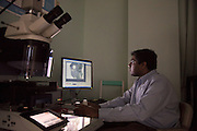 Genomics Facility Director Vijayanand Nadella views an image of mouse brain tissue using a Leica DM6000 B upright microscope.