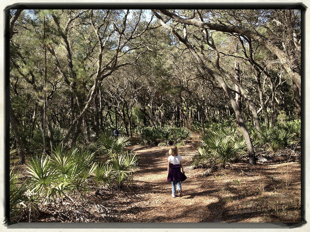 Gary Cosby Jr.  iPhone photographs<br /> A child walks down a trail in Florida.