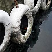 Noorwegen Bergen 30 december 2008 20081230 Foto: David Rozing .Havenstad Bergen, haven. Stootkussens voor aanleg schepen en boten. In een vd banden liggen 2 rozen .The city of Bergen, harbour, boat. ..Foto: David Rozing