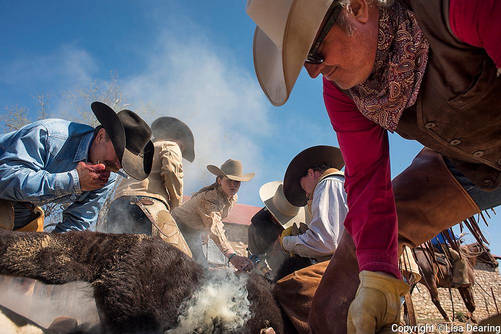Branding Crew, Twin V Ranch, Texas