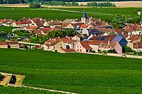France, Region Bourgogne Franche-Comté, Côte-d'Or (21), Paysage culturel des climats de Bourgogne classés Patrimoine Mondial de l'UNESCO, village de Vosne Romanée et vignobles // France, Burgundy, Côte d'Or, vineyard of Vosne Romané
