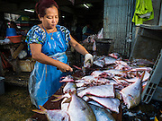 14 AUGUST 2015 - BANGKOK, THAILAND: A woman cuts up fresh fish for sale in Saphan Pla fish market in Bangkok. Saphan Pla fish market is the wholesale fish market that serves Bangkok. Most of the fish sold in Saphan Pla is farmed raised fresh water fish. The market is open 24 hours but it's busiest in the middle of the night and then again from about 7.30 until 11 in the morning.       PHOTO BY JACK KURTZ