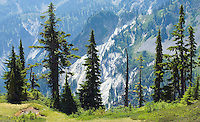 Mountain scenic Mt Baker Washington&#xA;<br />