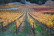 California Wine Country Photos