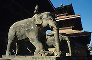 elephant near the nyatapola temple in bhaktapur, nepal