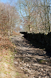 The Peak District in early Spring on the path from Derwent Edge to Cut Throat Bridge behind the Ladybower Pub..http://www.pauldaviddrabble.co.uk.11 March 2012 .Image © Paul David Drabble