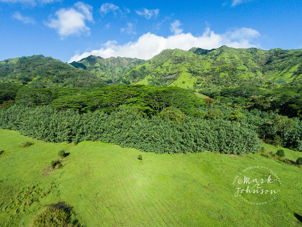 Aerial photograph of Mt. Makalea, Kauai, Hawaii