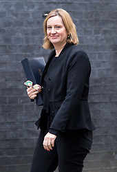 © Licensed to London News Pictures. 29/01/2018. London, UK. Home Secretary Amber Rudd arriving in Downing Street to attend a Brexit meeting this morning. Photo credit : Tom Nicholson/LNP