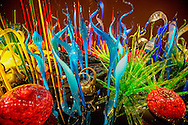 glass sculptures by Dale Chihuly in his museum