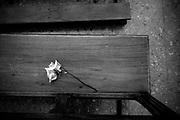 Javier Calvelo/ URUGUAY/ MONTEVIDEO/ Barrio Cerrito de la Victoria / Recorrido para Montevideo Ciudad Ocre.<br /> En la foto: Iglesia del Cerrito de la Victoria en Montevideo. Foto: Javier Calvelo <br /> 20140812 dia martes