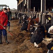 Zorgboerderij de Honspol Gooyerdijk 20 Driebergen, bewoners, verstandelijk gehandicapten verzorgen koeien, eten hooi,