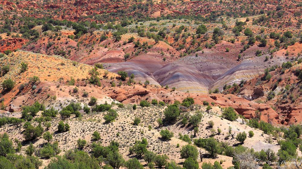 The colors of the Arizona desert along House Rock Valley Road near the Utah border
