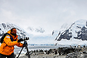 Nature photographer documenting wildlife in Antarctica