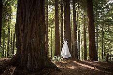 Vainuku Wedding