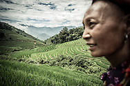 Profile of a Red Dao woman standing beside lush green terraced rice fields in Thanh Kim Commune, Sapa District, Lao Cai Province, Vietnam, Southeast Asia