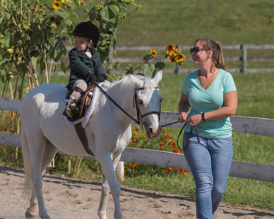 Image from the September 16, 2017 Elmington Farm Hunter Horse Show held at Elmington Farm in Berryville, VA