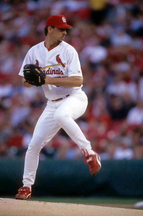 St. Louis Cardinal Baseball