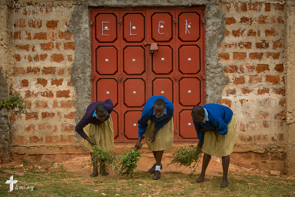 Young women use bunched herbs to clean the front door area of the U-Dom ELCK (Evangelical Lutheran Church in Kenya) Project 24 site on Thursday, June 23, 2016, in Chepareria, Kenya.  LCMS Communications/Erik M. Lunsford