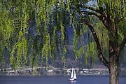 Sailing, Kelowna, B.C., Canada<br />