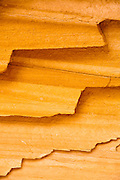 Sandstone. Capitol Reef National Park near Torrey, Utah.