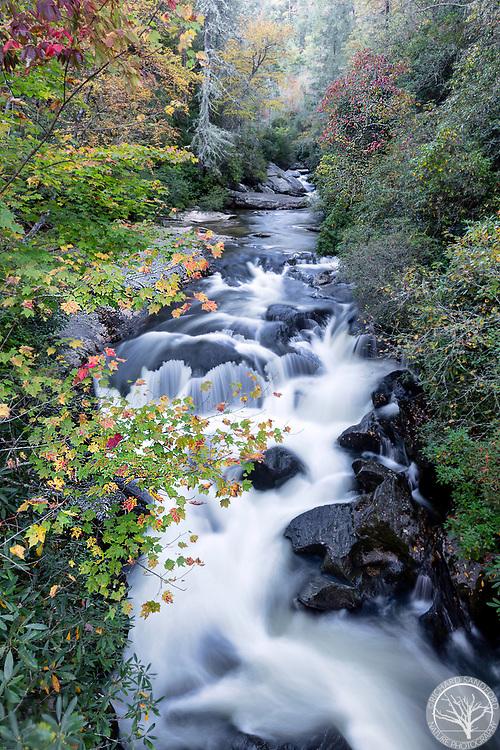 Fall foliage along the Chattooga River, near Highlands, North Carolina