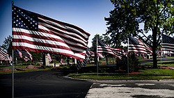 May 26, 2019 - Brookfield, Wisconsin, U.S - An impressive collection of American Flags adorn Milwaukee Memorial Park, commemorating Memorial Day. (Credit Image: © Chris Riha/ZUMA Wire)