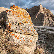 Lichen on rock, Badlands National Park, South Dakota