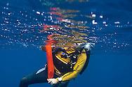 Scuba Diving, Safety, Molokai Hawaii