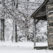 The Adamson cabin, Lawrence county, Missouri, during a spring snowstorm.