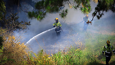 Auckland-Firefighters contend with scrub fire at rear of Waikumete Cemetery