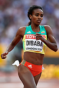 Great Britain, London - 2017 August 04: Genzebe Dibaba from Ethiopia competes in women&rsquo;s 1500m qualification during IAAF World Championships London 2017 at  London Stadium on August 04, 2017 in London, Great Britain.<br /> <br /> Mandatory credit:<br /> Photo by &copy; Adam Nurkiewicz<br /> <br /> Adam Nurkiewicz declares that he has no rights to the image of people at the photographs of his authorship.<br /> <br /> Picture also available in RAW (NEF) or TIFF format on special request.<br /> <br /> Any editorial, commercial or promotional use requires written permission from the author of image.