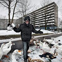 Nederland, Amsterdam Z.O. 28 december 2010. ,.Een man van Surinaamse afkomst voedert de ganzen. Op de achtergrond de flat Kleiberg die in maart 2011 volledig gesloopt wordt..Foto:Jean-Pierre Jans