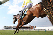PEPPAY LE PUGH (5) ridden by Harry Skelton and trained by Dan Skelton winning The Barr Environmental Novices Limited Handicap Steeple Chase over 2m (£16,800) in front of the packed Grandstands during the Scottish Grand National, Ladies day at Ayr Racecourse, Ayr, Scotland on 12 April 2019.