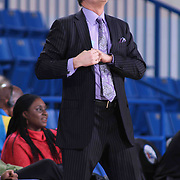 Sioux Falls Skyforce Head Coach Phil Weber looks up at the clock in the first half of a NBA D-league regular season basketball game between the Delaware 87ers and the Sioux Falls Skyforce (Miami Heat) Tuesday, Jan. 27, 2015 at The Bob Carpenter Sports Convocation Center in Newark, DEL
