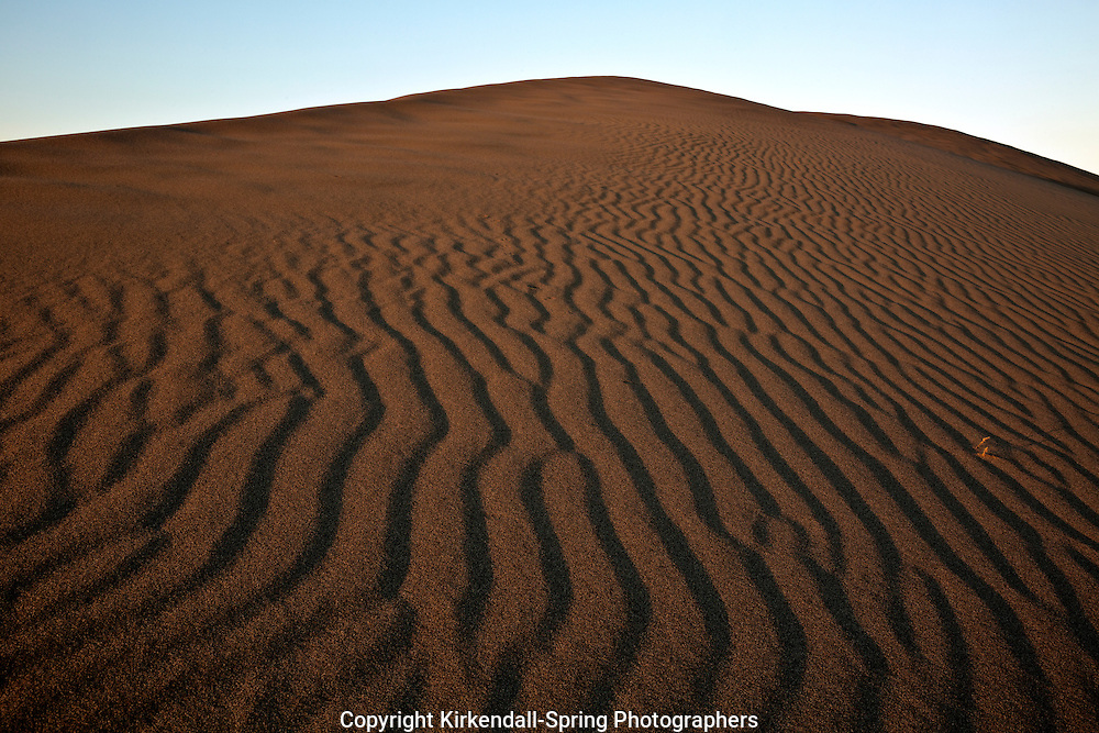ID00653-00...IDAHO - Early morning at Bruneau Dunes State Park near Mountain Home.