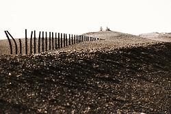 Gig on the beach, Salthouse