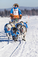 Musher Mats Pettersson competing in the 45rd Iditarod Trail Sled Dog Race on the Chena River after leaving the restart in Fairbanks in Interior Alaska.  Afternoon. Winter.