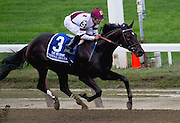 """Royal Delta"", with Mike Smith aboard, winning the Beldame in 2012."