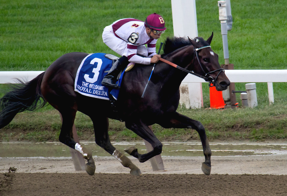 """""""Royal Delta"""", with Mike Smith aboard, winning the Beldame in 2012."""
