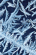 Frost on window, Lapeer County, Michigan