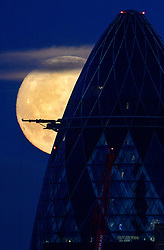 © Licensed to London News Pictures. 13/11/2016. London, UK. A supermoon seen rising over the London landscape behind the The Gherkin Building. The moon is expected to be the biggest and brightest that it has been since 1948. Photo credit: Ben Cawthra/LNP