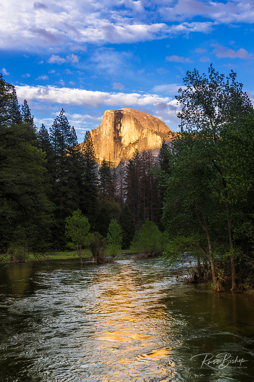 Evening light on Half Dome above the Merced River, Yosemite National Park, California USA