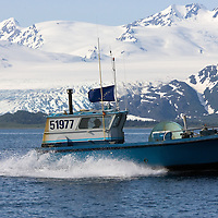 Fisherman Randy Johnson runs his boat, the Jaycie J, past Tebenhoff Glacier in Prince William Sound, Alaska. Johnson's boat is flying the Alaska flag with the Big Dipper and North Star. The glacier is about 25 miles south of the town of Whittier.
