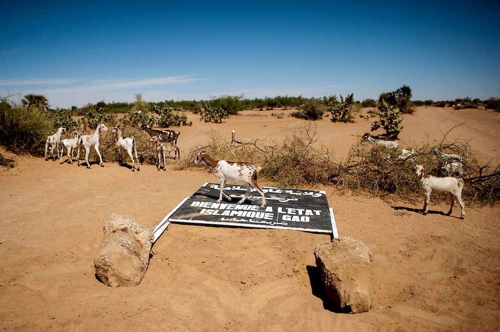 08/02/2013. Gao, Mali. Panneau islamiste à Gao sur le route de Bourem. ©Sylvain Cherkaoui/ Cosmos pour Le Monde