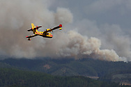 LEIRIA, PORTUGAL - JUNE 20:  A firefighter plane works on a fire after a wildfire took dozens of lives on June 20, 2017 near Pedrogao Grande, in Leiria district, Portugal. On Saturday night, a forest fire became uncontrollable in the Leiria district, killing at least 64 people and leaving many injured. Some of the victims died inside their cars as they tried to flee the area.  (Photo by Pablo Blazquez Dominguez/Getty Images)
