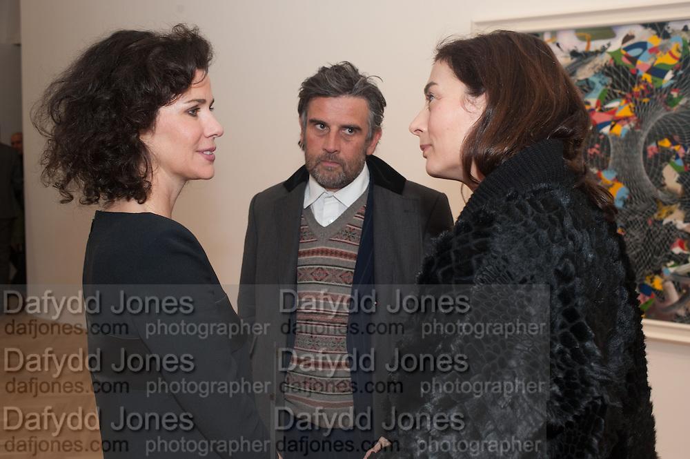 MOLLIE DENT-BROCKLEHURST; PAUL FRYER; FRANCESCA AMFITEROF, Panta Rhei. An exhibition of work by Keith Tyson. The Pace Gallery. Burlington Gdns. 6 February 2013.