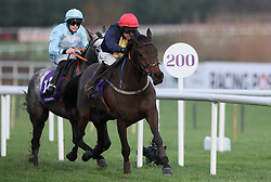 City Island ridden by Mark Walsh races clear of the last on the way to winning the Thorntons Recycling Maiden Hurdle on day one of the Leopardstown Christmas Festival at Leopardstown Racecourse.
