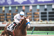 November 1-3, 2018: Breeders' Cup Horse Racing World Championships. Jockey Drayden Van Dyke and Improbable win the Street Sense stakes race